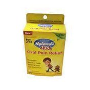 Hyland's Oral Pain Relief Quick Dissolving Tablets