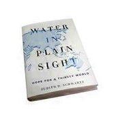 Nutri Books Water In Plain Sight 1 Bk