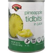 Hannaford Pineapple Tidbits in Juice