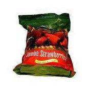 Campoverde Strawberries, Jumbo