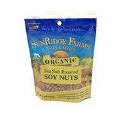 SunRidge Farms Organic Roasted & Salted Soy Nuts