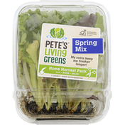 Petes Living Greens Spring Mix, Home Harvest Pack