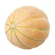 Savor Fresh Farms Golden Kiss Melon