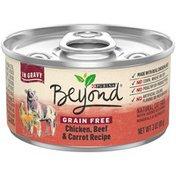 Beyond Grain Free Chicken Beef & Carrot Recipe in Gravy Canned Wet Cat Food