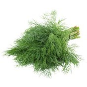 Fennel Leaves Bunch