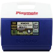 Igloo Cooler, 16 Quart, Blue