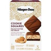 Haagen-Dazs Peanut Butter Ice Cream Cookie Squares