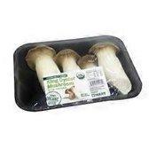 Organic King Oyster Mushroom