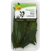 Wild Harvest Bay Leaves, Organic, Fresh