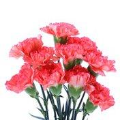 Arrange Roses & Carnations in a Vase