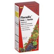 Floradix Iron + Herbs, Liquid Extract Formula