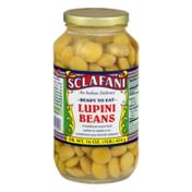 Sclafani Lupini Beans