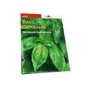Burpee Genovese Basil Seed Packet