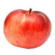 Spartan Apple Bag