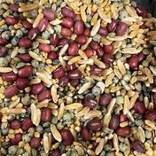 Organic Wisdom Blend Sprouting Mix