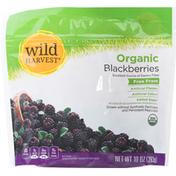 Wild Harvest Blackberries