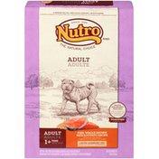 NUTRO Adult Fish Whole Brown Rice & Potato Recipe Dog Food