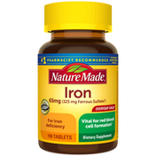 Nature Made Iron 65 mg (from Ferrous Sulfate) Tablets