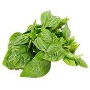 Garden Zest Herbs Organic Basil