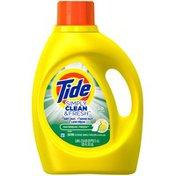 Tide Simply Clean & Fresh HE Liquid Laundry Detergent, Daybreak Fresh Scent, 80 Loads 125 Fl Oz Laundry