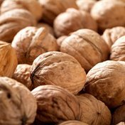 Treasured Harvest In Shell Jumbo Walnuts