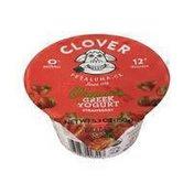 Clover Organic Greek Yogurt