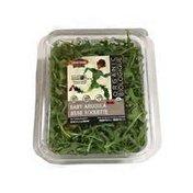 Classic Salads Organic Baby Arugula