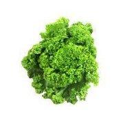 Produce aisle Organic Mustard Greens