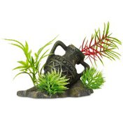 Petco Imag Gallipot With Plant