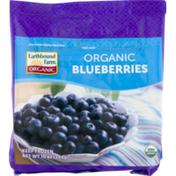 Earthbound Farms Organic Blueberries