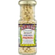 Sclafani Pine Nuts