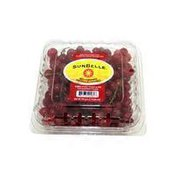 Sunbelle Red Currants