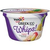 Yoplait Greek 100 Calories Whips! Tropical Fat Free Yogurt Mousse