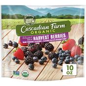 Cascadian Farm Organic Antioxidant Blend Harvest Berries, Non-GMO