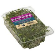 Sproutman Broccoli Rabe Blend, Organic