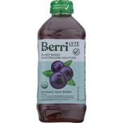 Berri Lyte Electrolyte Solution, Organic, Acai Berry Flavor, Plant-Based