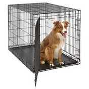 """MidWest Homes for Pets LS-1642 42"""" x 28"""" x 32"""" Life Stages Single Door Dog Crate"""