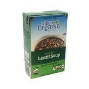 Clearly Organic Organic Lentil Soup