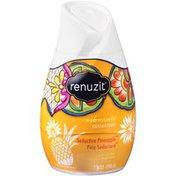 Renuzit Seductive Pineapple Gel Air Freshener