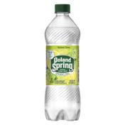 Poland spring Sparkling Water, Lemon Lime