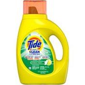 Tide Simply Clean & Fresh Liquid Laundry Detergent, Daybreak Fresh