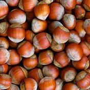 In Shell Filberts Hazelnuts