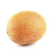 Sharlyn Melon