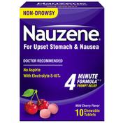 NAUZENE Chewables for Upset Stomach & Nausea