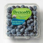 Driscoll's Organic Blueberries