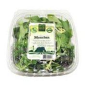 Kenter Canyon Farms Organic Mesclun Lettuce