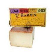 Spanish Goat Ibores