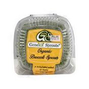 Genesis Sprouts Organic Broccoli Sprouts