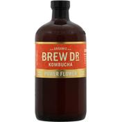 Brew Dr. Kombucha Vanilla Oak Kombucha