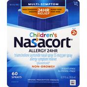 Nasacort Allergy 24 HR